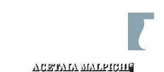 Otet Balsamic